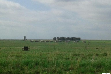 6 Bedroom Farm  For Sale in Marquard   827984   Property.CoZa