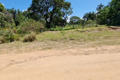 Vacant Land / Stand  For Sale in Palm Beach   1331563   Property.CoZa