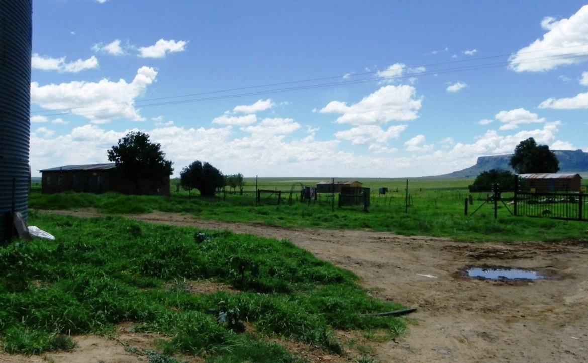 4 Bedroom   For Sale in Harrismith   1246607    Photo Number 17