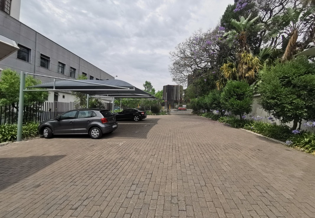 To Rent in Rosebank | 1306222 |  Photo Number 3