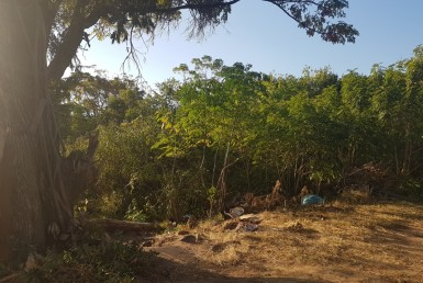 Vacant Land / Stand  For Sale in Burlington Gardens | 1309389 | Property.CoZa