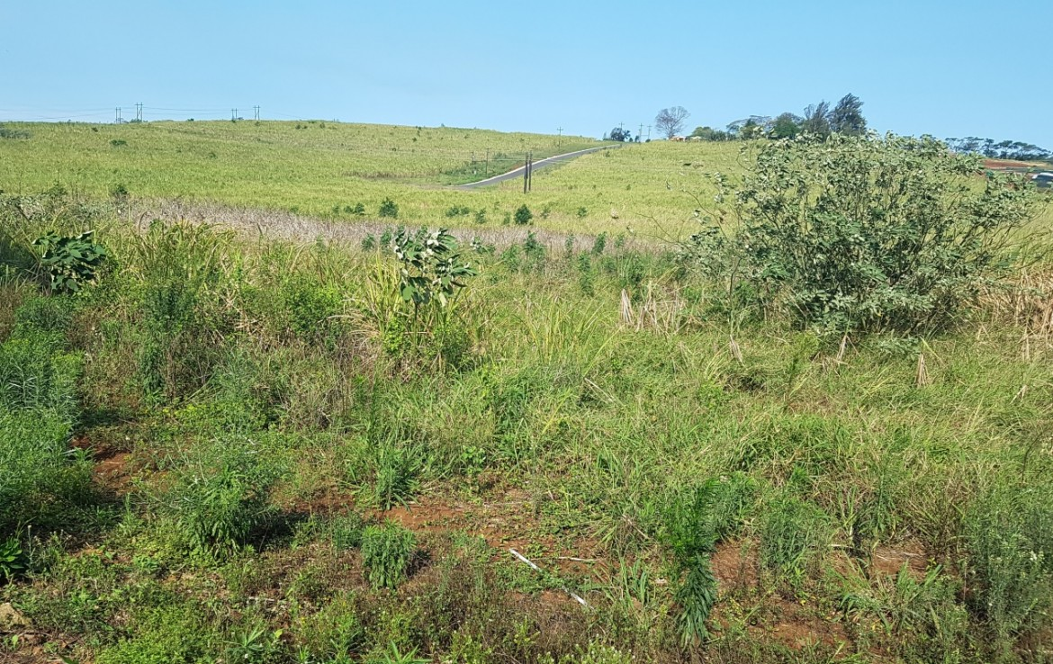 For Sale in Ballito Rural   1316281    Photo Number 2