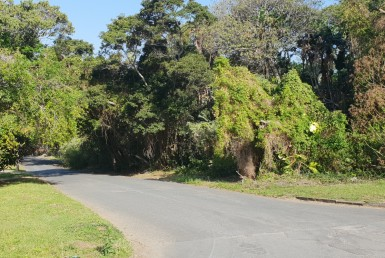Vacant Land / Stand  For Sale in Ramsgate   1316514   Property.CoZa