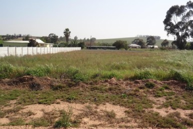 Vacant Land / Stand  Auction in Moorreesburg | 1319335 | Property.CoZa
