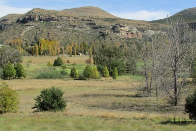 Vacant Land / Stand  For Sale in Clarens Golf & Trout Estate | 1324143 | Property.CoZa