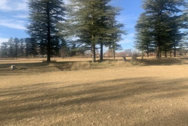 Vacant Land / Stand  For Sale in Ficksburg | 1325565 | Property.CoZa
