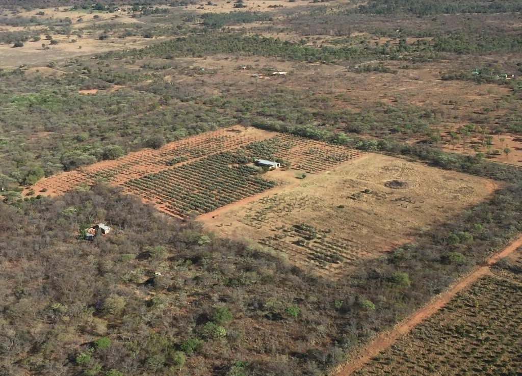 18 Bedroom   For Sale in Modimolle Rural   1327485    Photo Number 21